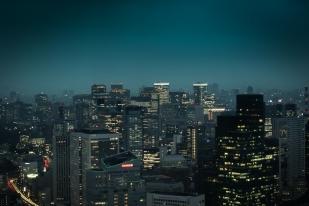 Blick vom Mori Tower (238m)