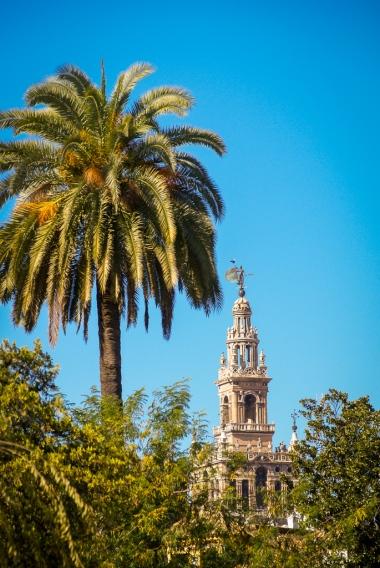 Die Giralda ist das ehemalige Minarett der Hauptmoschee von Sevilla.