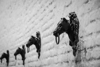 Die Stierkampfarena La Maestranza