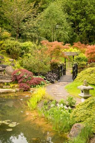 Zu dem Anwesen von Kingston Lacy gehören ca. acht Hecktar Park. Der in unterschiedlichen Formen angelegt ist. Hier z.B. als Japanischer Teegarten.