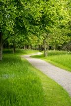Verwunschene Wege führen durch den Park.
