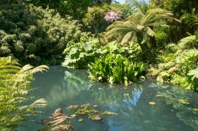 Lost Garden of Heligan is wie ein vergessenes Paradies.
