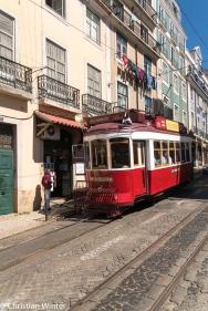 Die rot-weiß lackierten Bahnen bieten Stadtrundfahren an.