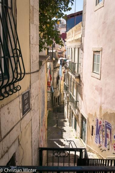 Alfama war früher ein Viertel der Unterschicht Lissabons. Der Stadtteil wurde durch das Erdbeben von 1755 kaum in beschädigt, so dass das Gewirr von engen Gassen und Treppenstufen bis heute erhalten ist.