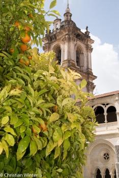 Die üppigen Gärten des Klosters und ihre umliegende Landwirtschaft haben in ihrer Blütezeit fast 1000 Mönche versorgt.
